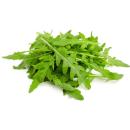 Свежи салати
